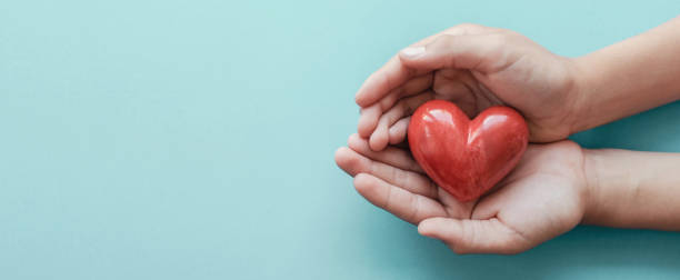 hands holding red heart on blue background, health care, love, organ donation, family insurance and csr concept, world heart day, world health day - wellbeing stock pictures, royalty-free photos & images