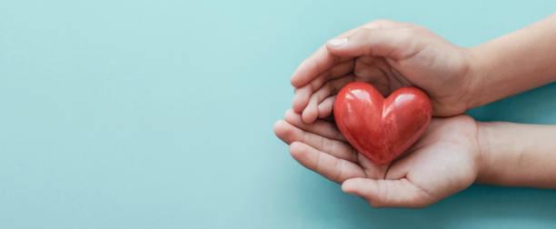 파란 배경, 건강 관리, 사랑, 장기 기증, 가족 보험 및 csr 개념, 세계 심장의 날, 세계 건강의 날에 빨간 마음을 들고 손 - wellness 뉴스 사진 이미지