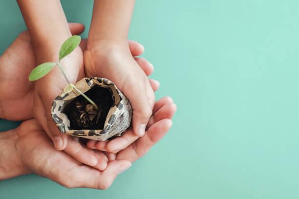 Hände halten Sämlinge Pflanzen in Zeitungstopf, montessori Bildung, CSR Corporate soziale Verantwortung, Öko grün nachhaltiges Leben, Null Abfall, pastisch frei, Welt-Lebensmitteltag, reponsible Konsumkonzept – Foto