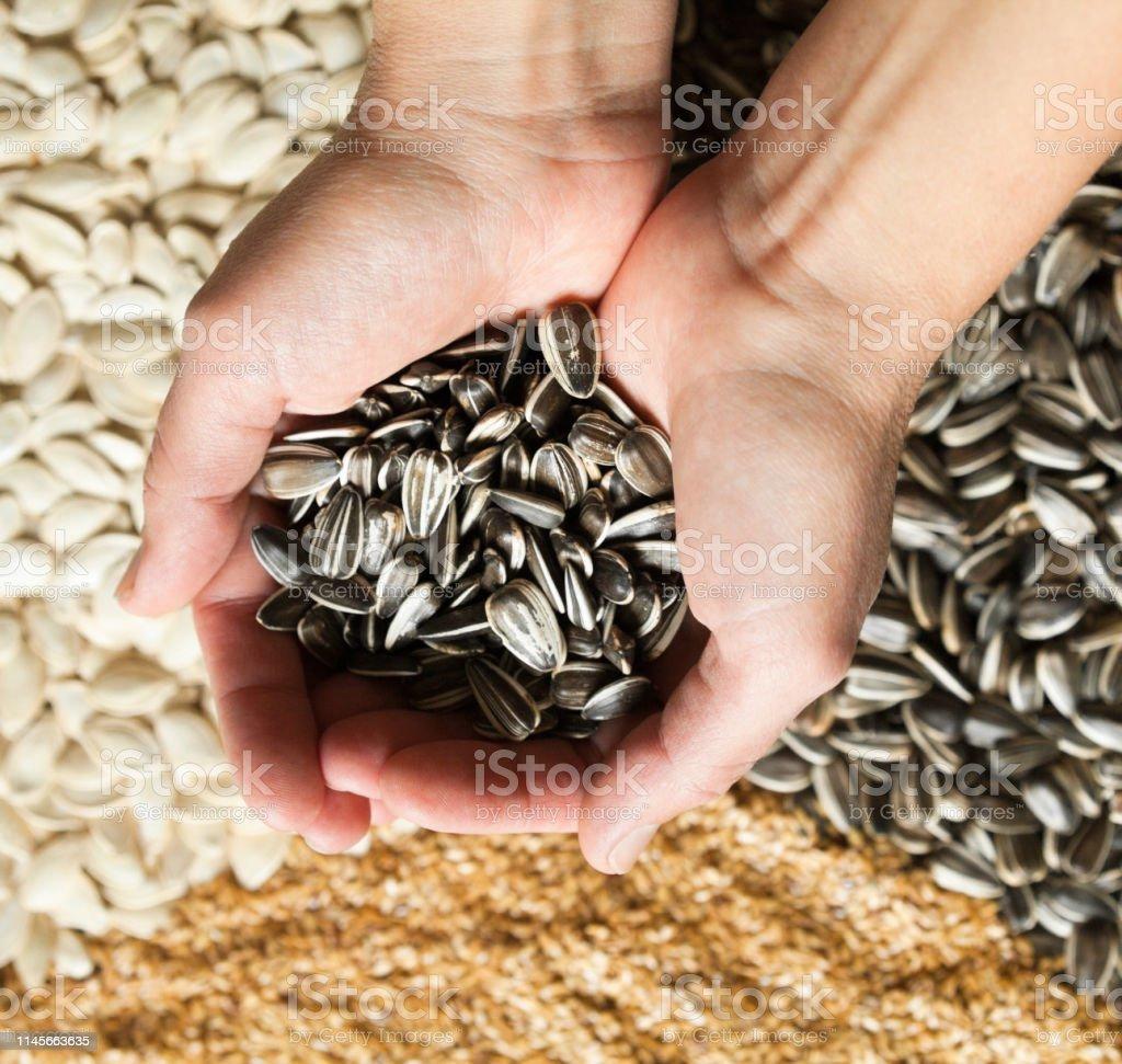 Hands holding sunflower seeds against sesame, sunflower and pumpkin...