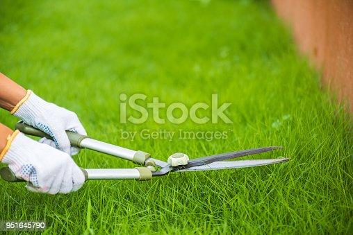 istock Hands holding the gardening scissors on green grass. Gardening concept background. 951645790