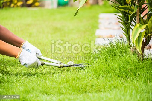 istock Hands holding the gardening scissors on green grass. Gardening concept background. 952715738