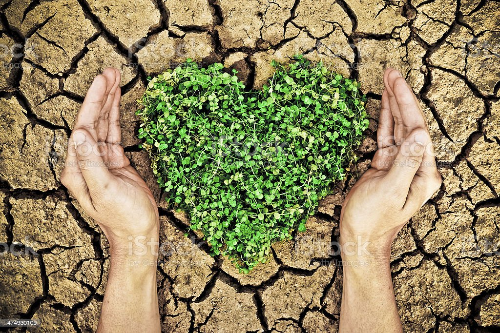 hands holding tree arranged as heart shape on cracked earth royalty-free stock photo