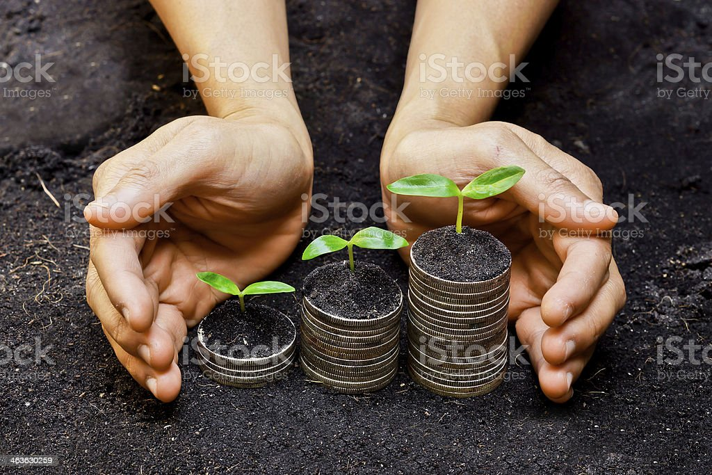 Hands holding trees growing on coins hands holding tress growing on coins / csr / sustainable development / economic growth Agriculture Stock Photo