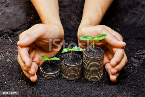 istock Hands holding trees growing on coins 463630259