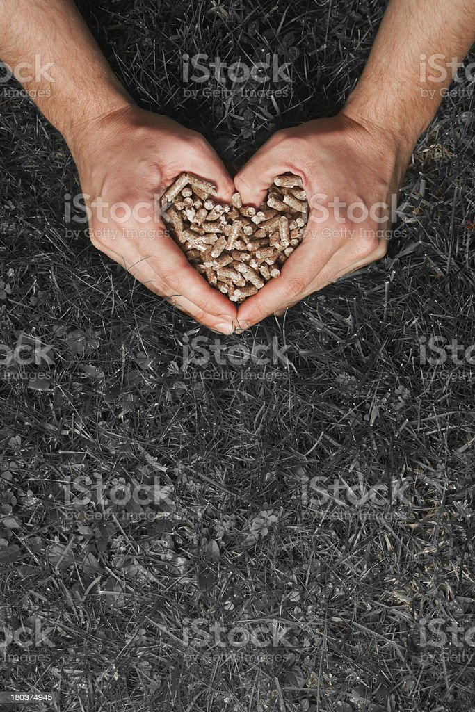 Hands in heart shape holding pellets. royalty-free stock photo