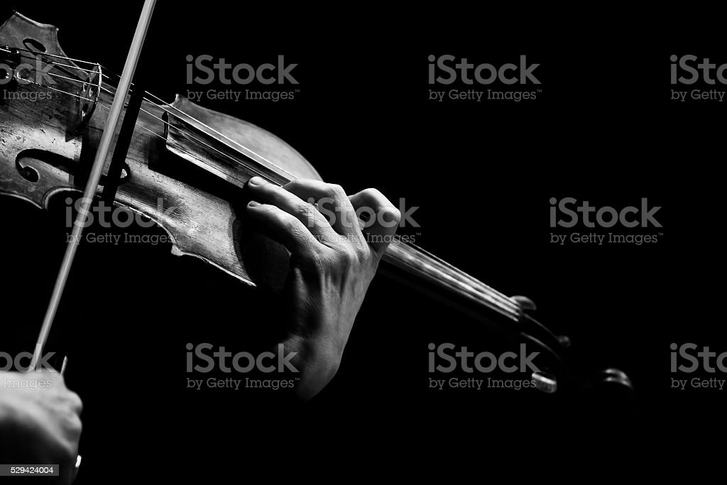 Hands musician playing the violin stock photo