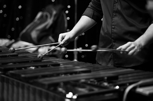 Hands musician playing the xylophone