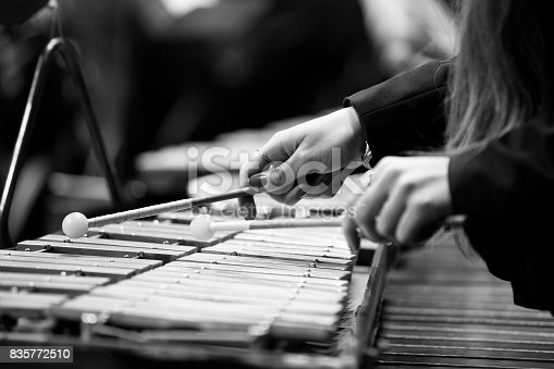 Hands of a girl playing a glockenspiel closeup in black and white