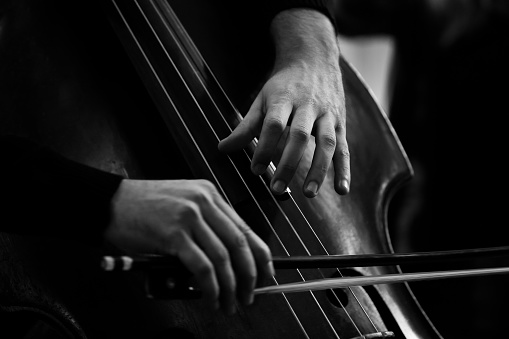 Hands of a musician playing on a double bass closeup