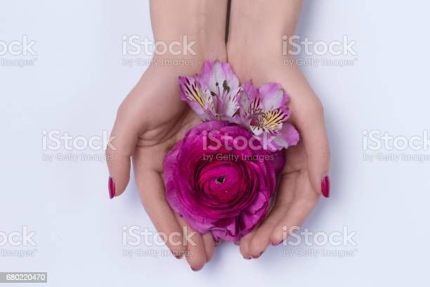 Hands of a woman with flowers picture id680220470?b=1&k=6&m=680220470&s=612x612&h=8rr74aepvq2 e je6ff7vf a7dmtyindjnp mpprehi=
