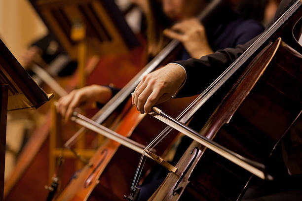 Hands of the man playing the cello Hands of the man playing the cello in dark colors animal hand stock pictures, royalty-free photos & images