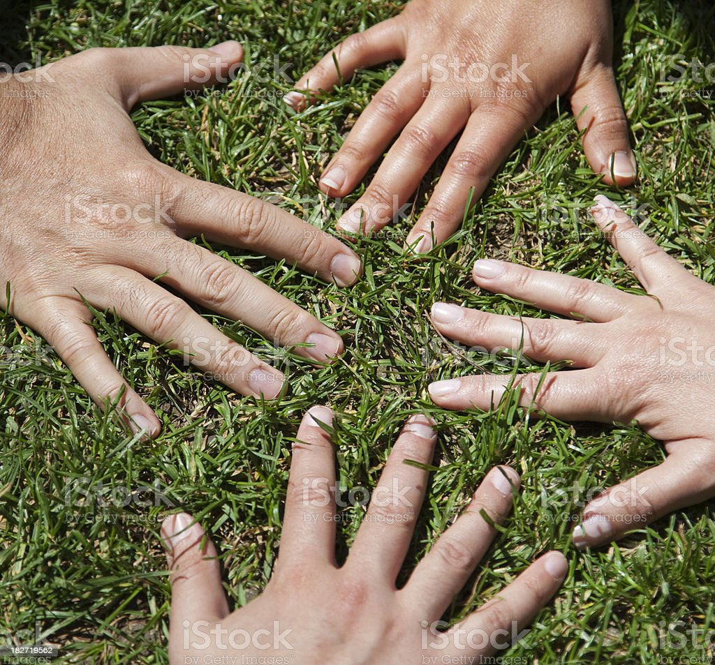 Hands on Grass royalty-free stock photo