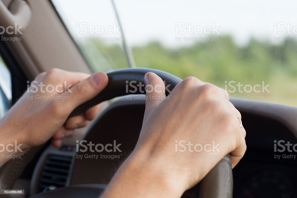hands on the wheel stock photo