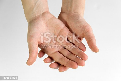 Hands open on a white background