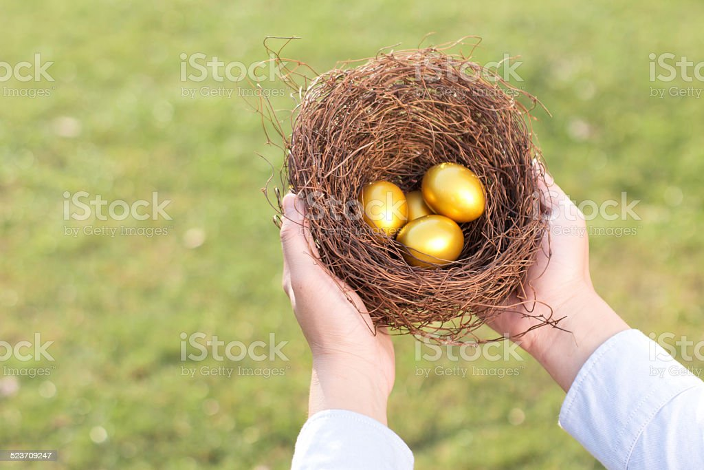 hands out golden eggs and  nest stock photo