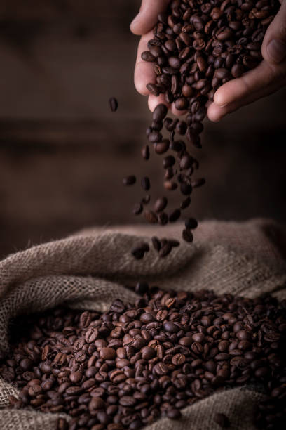 Hands pouring coffee beans to sack stock photo