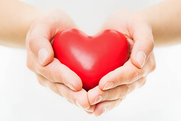 Hands Presenting Heart stock photo