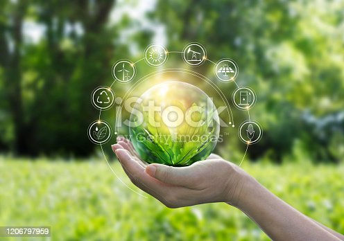 istock Hands protecting globe of green tree on tropical nature summer background, Ecology and Environment concept 1206797959