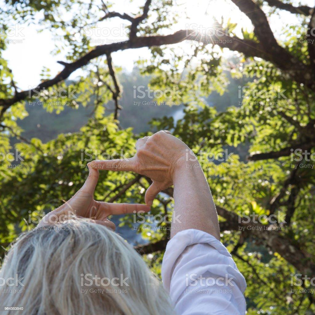 Mãos, atingindo até a cachoeira de quadro na floresta tropical - Foto de stock de 55-59 anos royalty-free