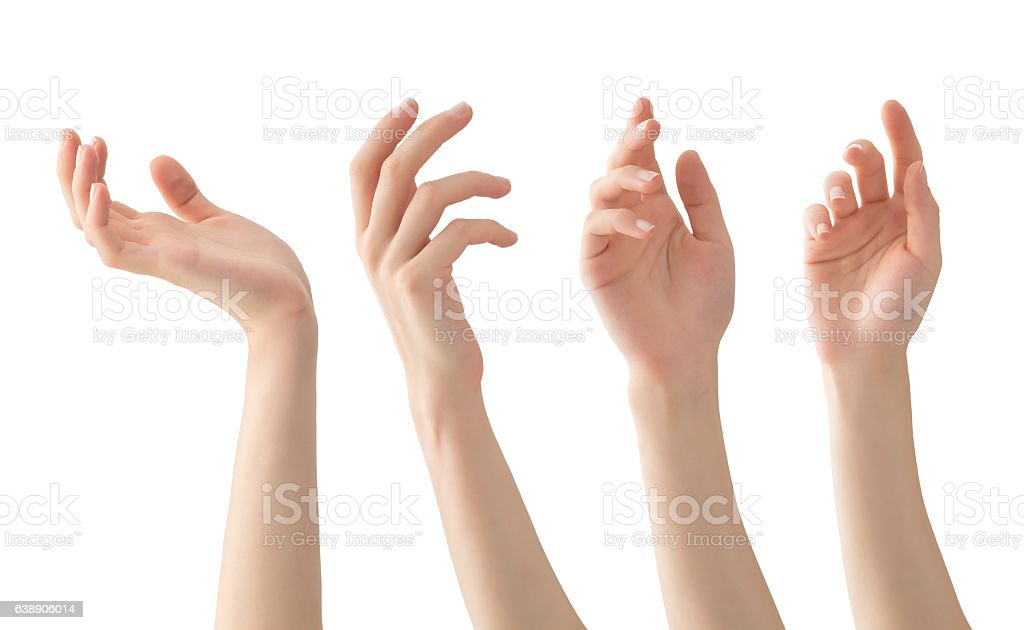 Hands set , isolated
