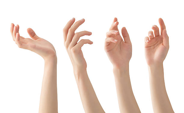 Hands set , isolated stock photo