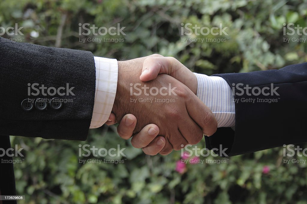 Hands shake, ecology agreement royalty-free stock photo