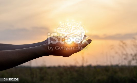 istock Hands support the brain in the sun . 1014950206