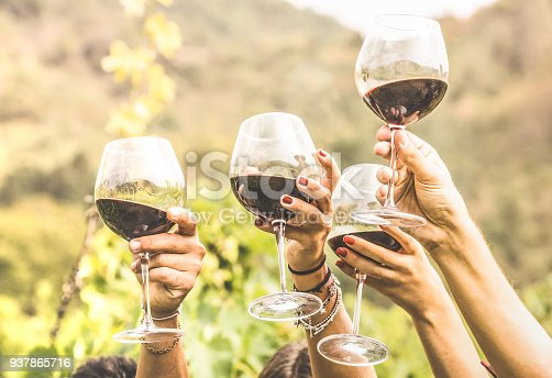 istock Hands toasting red wine glass and friends having fun cheering at winetasting experience - Young people enjoying harvest time together at farmhouse vineyard countryside - Youth and friendship concept 937865716