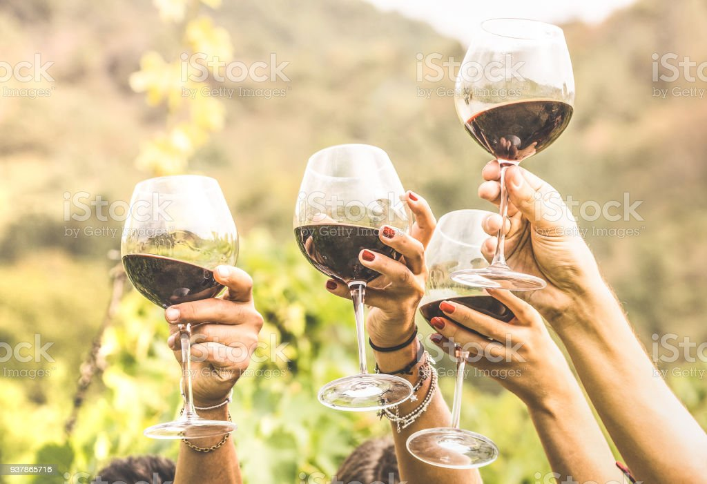 Hands toasting red wine glass and friends having fun cheering at winetasting experience - Young people enjoying harvest time together at farmhouse vineyard countryside - Youth and friendship concept stock photo