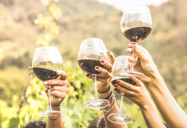 hands toasting red wine glass and friends having fun cheering at winetasting experience - young people enjoying harvest time together at farmhouse vineyard countryside - youth and friendship concept - honour stock photos and pictures