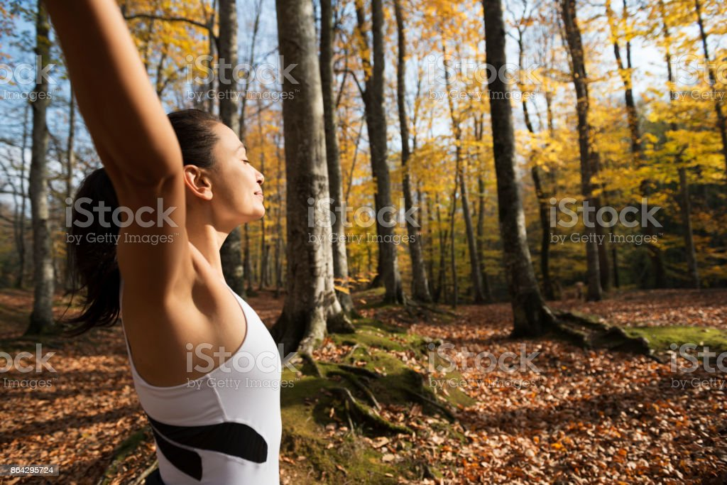 Hands Up in Forest royalty-free stock photo
