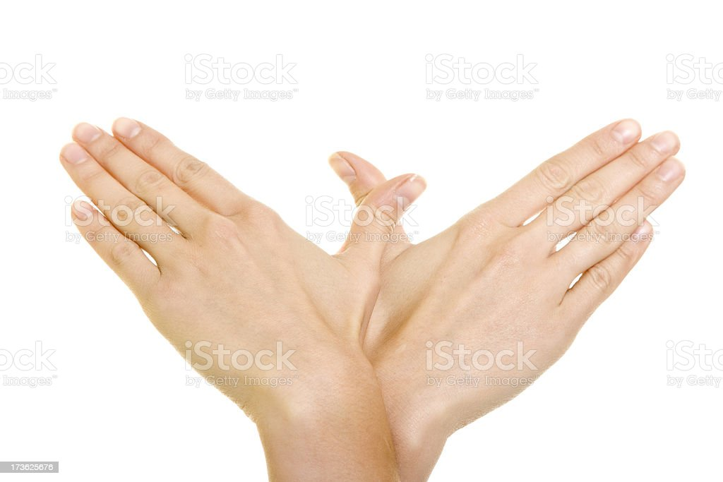 Hands - Wings Sign isolated on white royalty-free stock photo