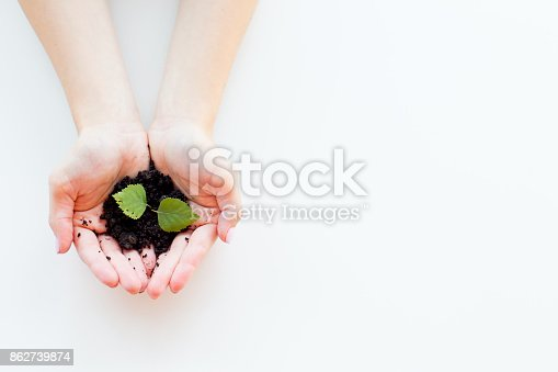 istock Hands with a plant 862739874