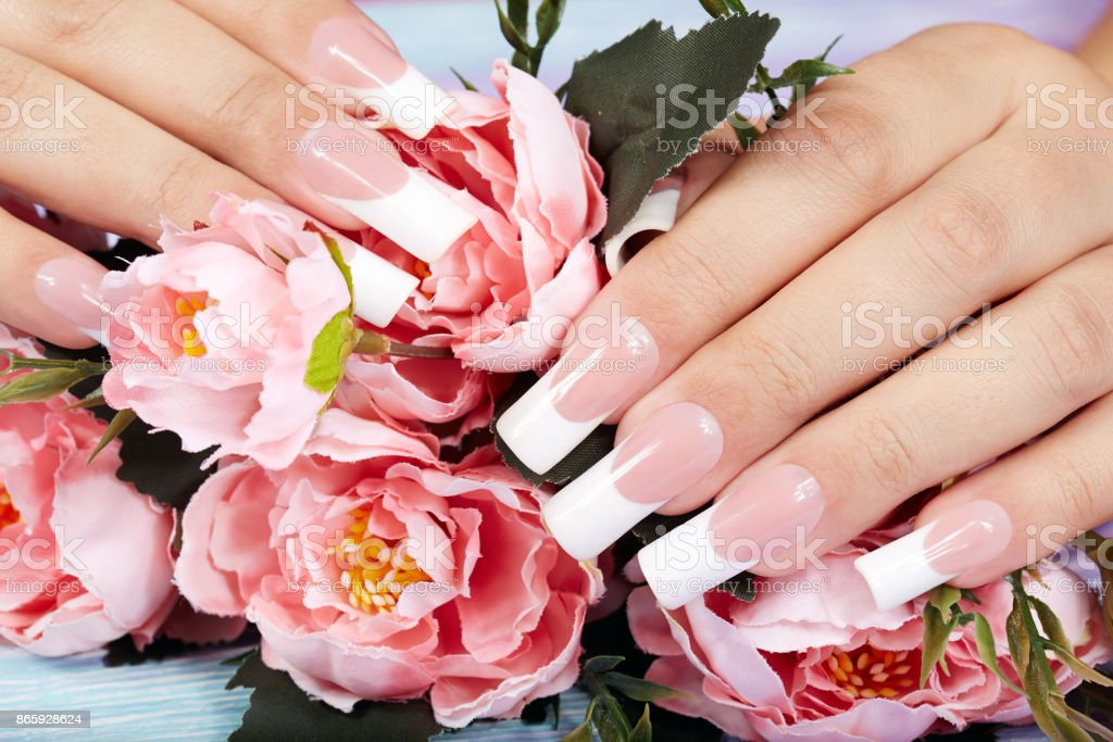 Hands with beautiful long artificial french manicured nails and pink...