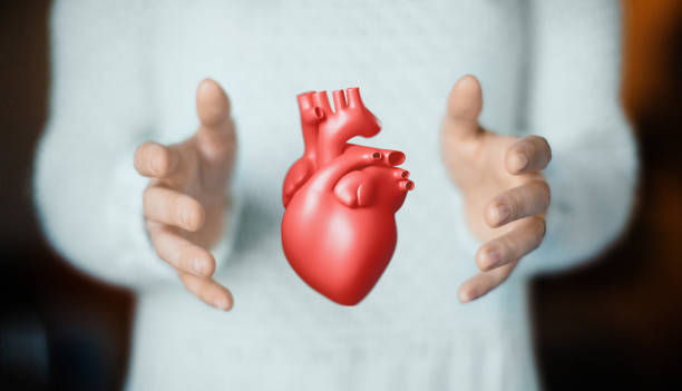Hands with heart, health or love stock photo