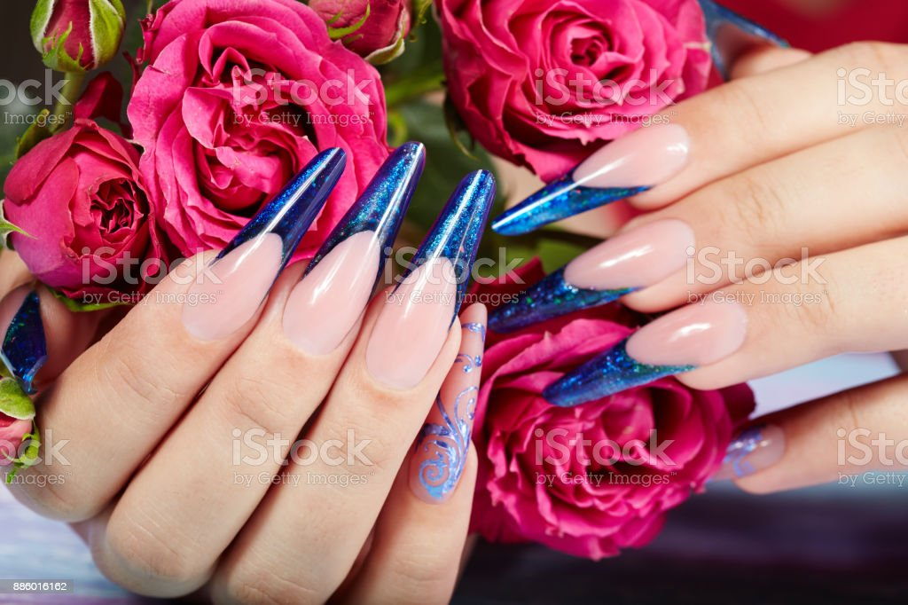 Hands with long artificial blue french manicured nails and pink rose...
