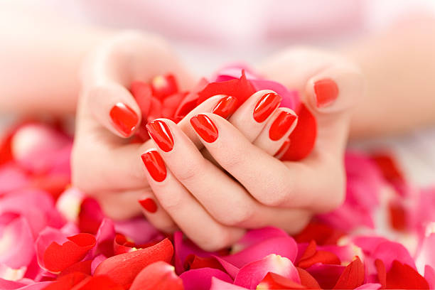 Hands With Petals stock photo