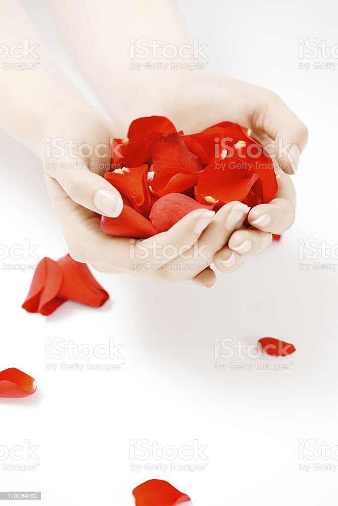 Hands With Petals royalty-free stock photo