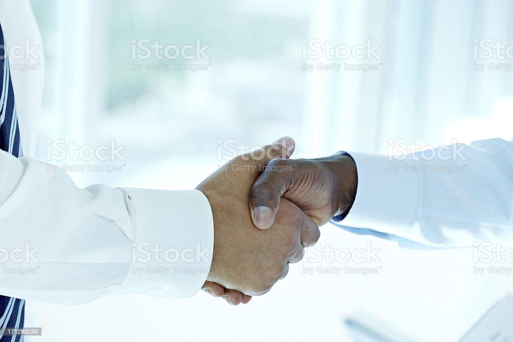 Handshake of partners royalty-free stock photo