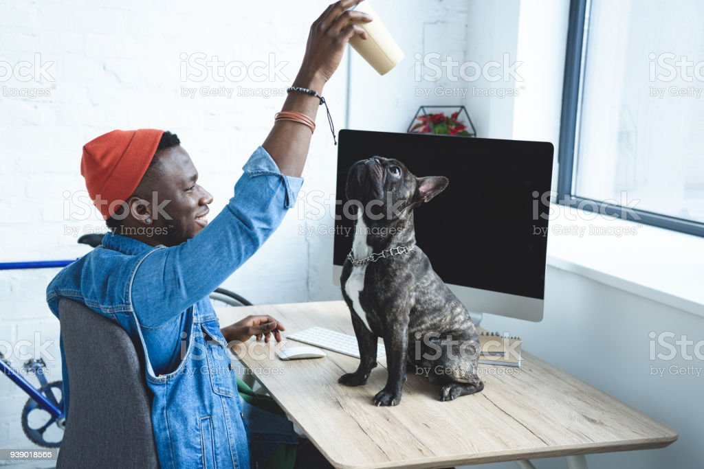 Handsome african american man playing with dog on computer table stock photo
