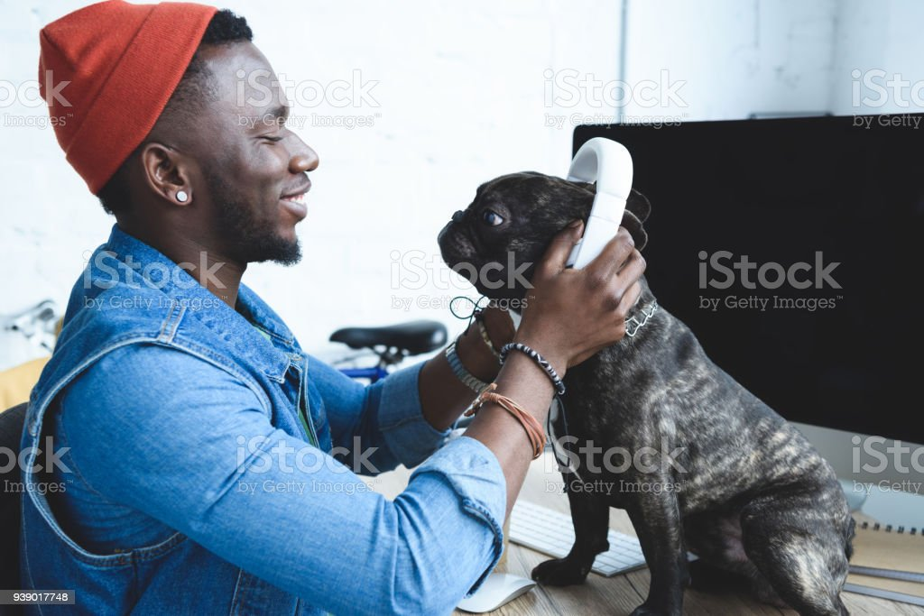 Handsome african american man wearing headphones on French bulldog on computer table stock photo