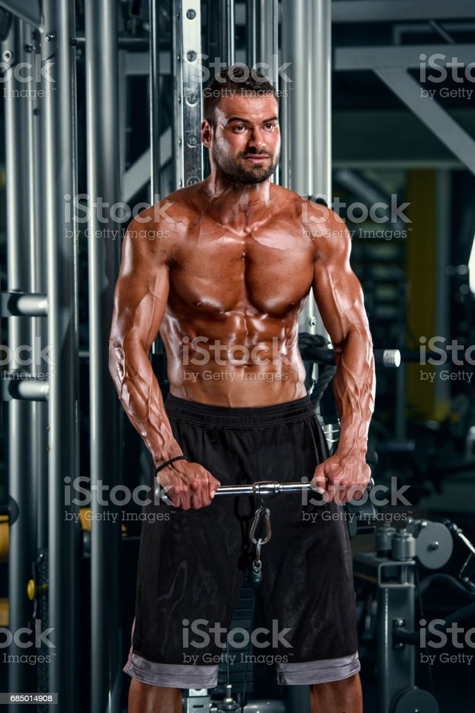 Handsome Athletic Men Exercise in the Gym stock photo