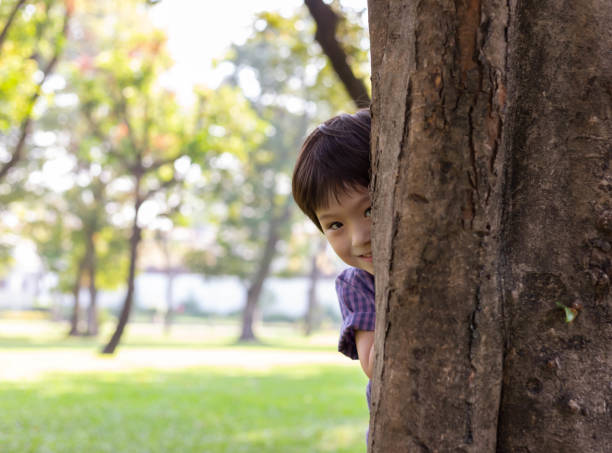 Handsome boy hiding behind tree for playing hide and seek with friend at park or son hiding mother behind tree because little kid do something wrong. He is laughing because nobody can not see him Handsome boy hiding behind tree for playing hide and seek with friend at park or son hiding mother behind tree because little kid do something wrong. He is laughing because nobody can not see him hide and seek stock pictures, royalty-free photos & images
