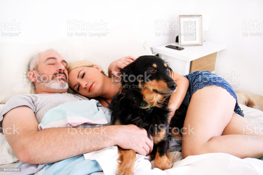 Handsome couple in bed sleeps together in association with their dog....