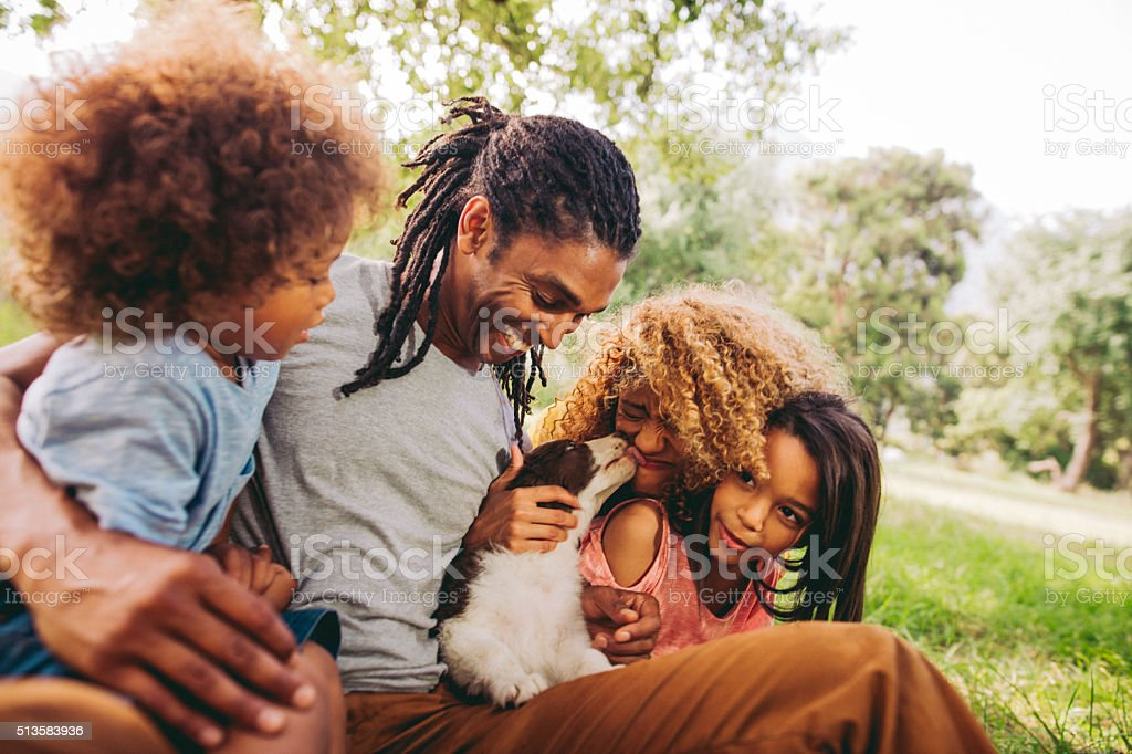 Handsome dad laughs as his beautiful wife gets puppy kisses. Handsome dad and cute kids laugh at the beautiful blonde curly haired mom getting cute puppy kisses from their new family pet border collie in the green grassy park. Adult Stock Photo