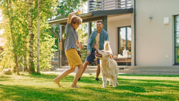 Handsome Father, and Son Play Catch With Loyal Family Friend Golden Retriever Dog. Family Spending Time Together Training Dog. Sunny Day Idyllic Suburban Home Backyard. stock photo