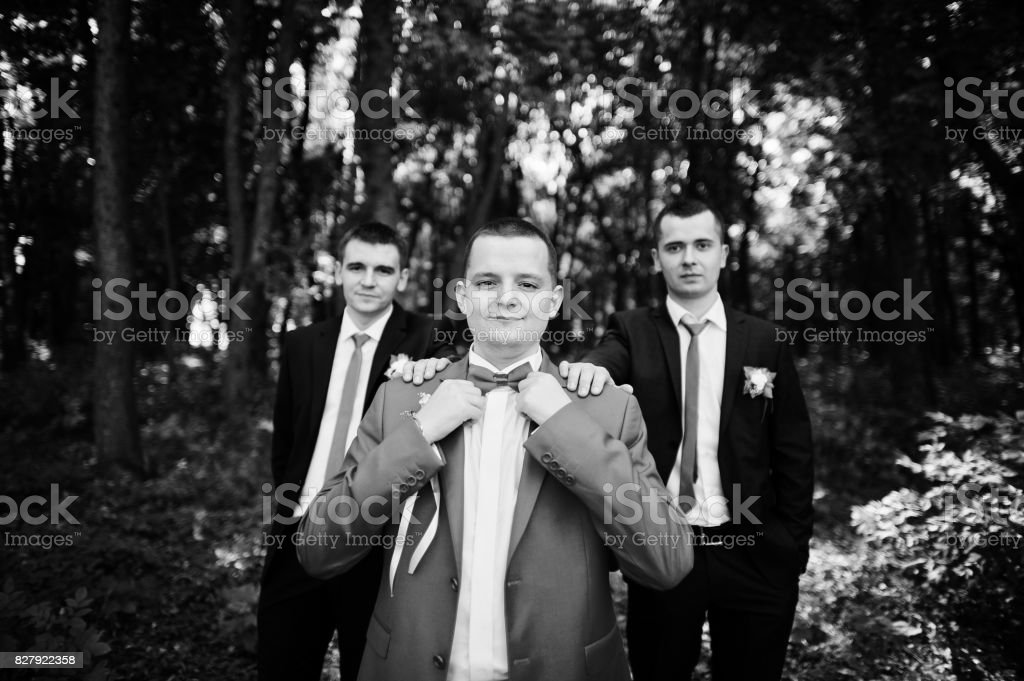 Handsome groom and his groomsmen posing in the forest on the wedding day. Black and white photo. stock photo