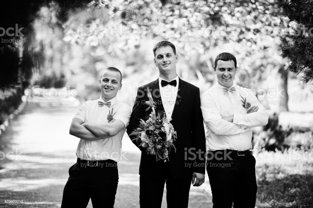 Handsome groom walking with his bestmen or groomsmen in the park on a wedding day. Black and white photo. stock photo