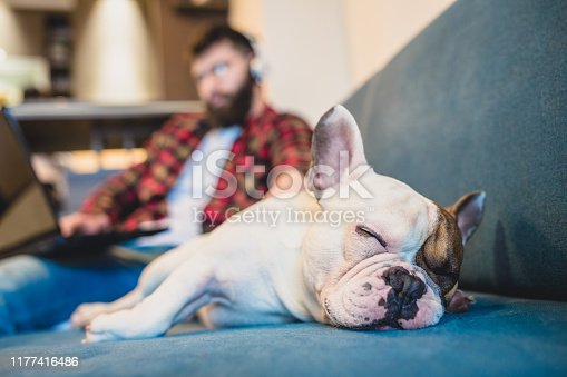 Handsome, hipster man sitting on the living room sofa with his dog